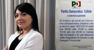 Cellole – PD, Felaco convoca l'assemblea per l'elezione della segreteria e dei delegati provinciali