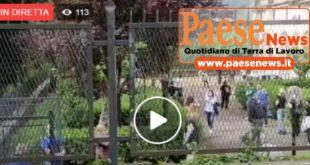 ROCCAROMANA – CORONAVIRUS TEST RAPIDI PER I CITTADINI. VIDEO IN DIRETTA