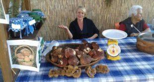 funghi-porcini-in-vendita