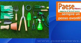 Giardinaggio: tutti gli strumenti necessari