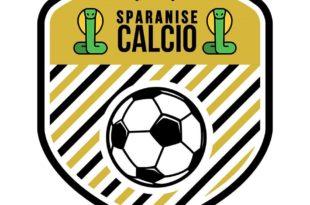 Il nuovo logo della squadra