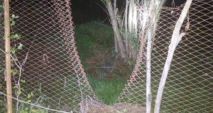 Teano – Ladri in azione nella frazione Scalo, famiglia salvata dai cani