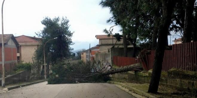 TEANO – Vento forte, località Sant'Antonio isolata. In azione i vigili del fuoco
